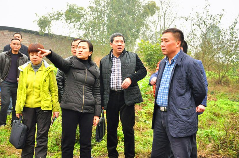 郑兴华率队调研农村工作情况