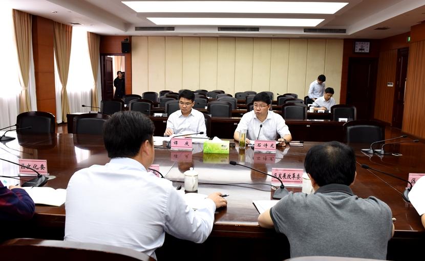 谭庆督办人大代表第31号重点建议  高起点高标准打造白沙文创产业园